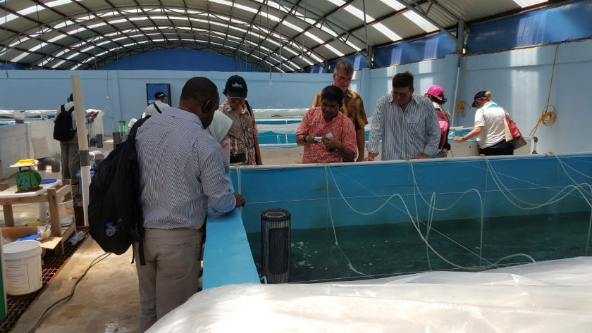 Participants of Sustainable Fisheries Management workshop visit fisheries in Batam